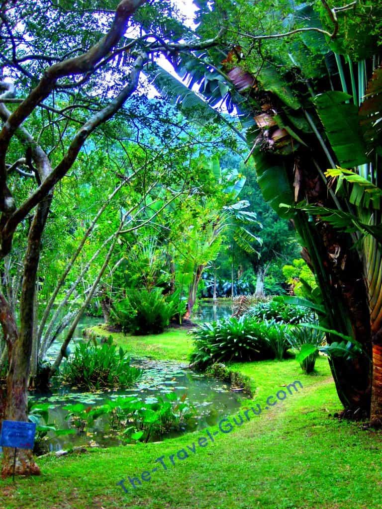 Botanical Gardens Rio de Janeiro