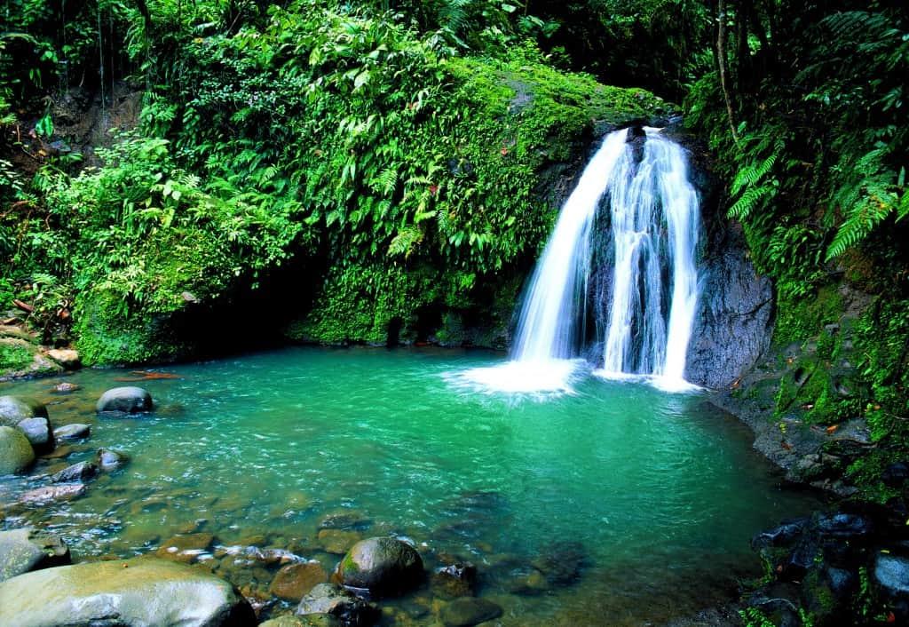 La cascade aux Ecrevisses et son bassin. Petit Bourg