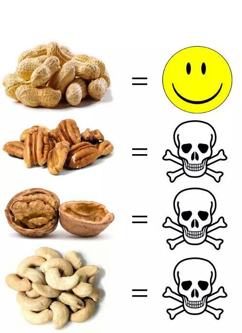 Nut allergy when you travel