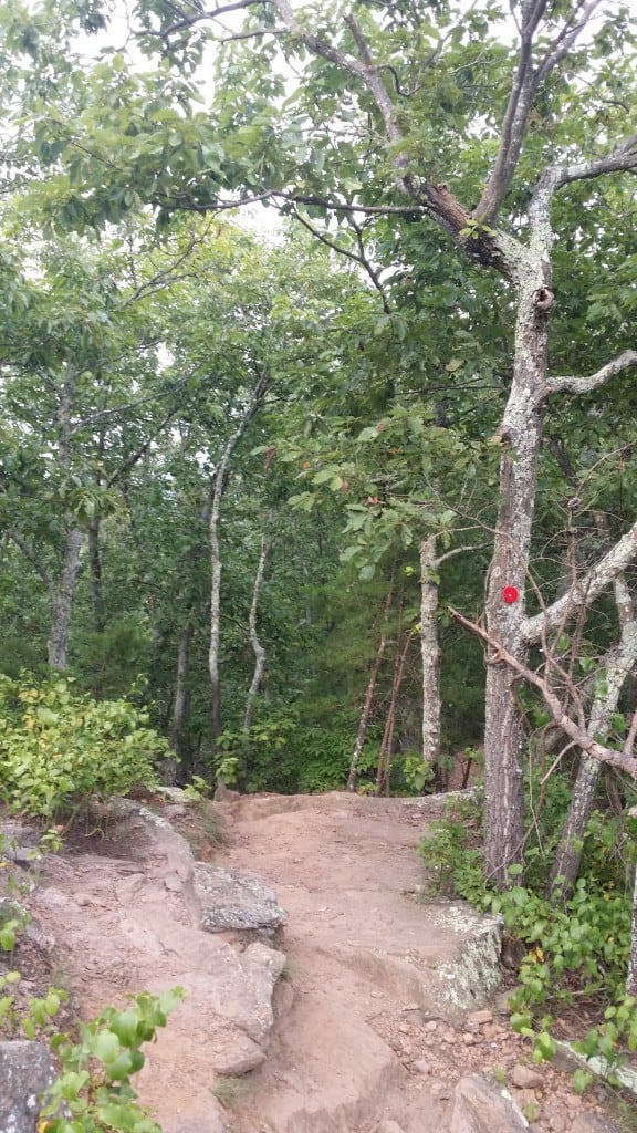 5 Tips To Enjoy Crowders Mountain