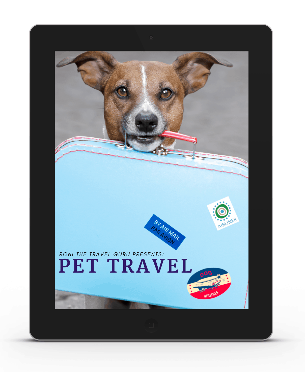 pet-travel